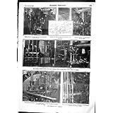 Salpa Americano Scientifico del Girino di 1905 delle Turbine di Carmania Animali dell'Albero di Propulsione