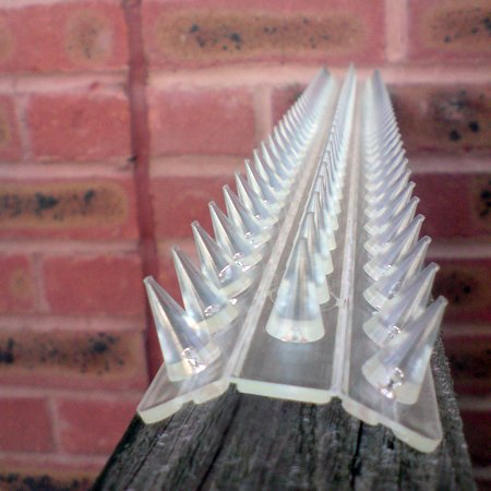 Clear Fence and wall spikes pack of 8