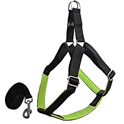 Pawzone Durable & Adjustable Green Body Harness With Leash for Dogs(3/4Inch)