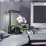 Intelligent Plant Light - Indoor Grow Light
