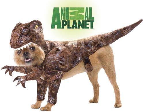 ANIMAL PLANET RAPTOR - SMALL