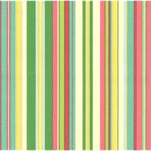 Beach Stripe fabric by Timeless Treasures pattern#debi-c2492-brite