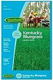 Barenbrug USA Green Thumb 528263 Kentucky Bluegrass Seed, 8-Pound (Discontinued by Manufacturer)