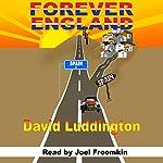 Forever England   David Luddington