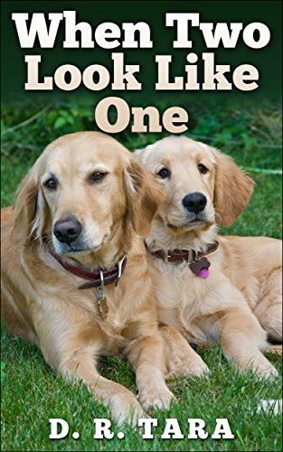 Free Kindle Book : When Two Look Like One