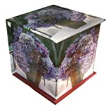 Peony Press Hydrangea: Memo Cube Plus Greetings Cards and Envelopes : A telephone companion with 400-page note block, plus 8 gift cards and envelopes (Stationery)