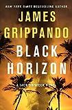 Black Horizon (Jack Swyteck Novel)