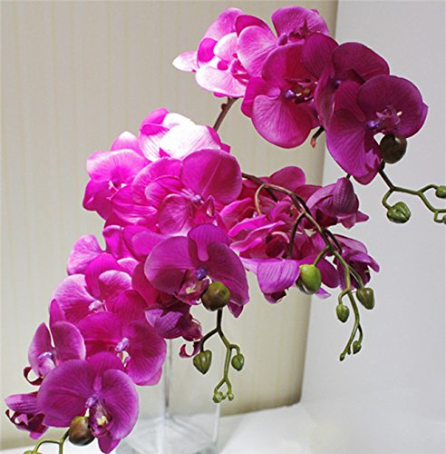 5pcs Latex Orchids Real Touch Orchid Fake Phalaenopsis 8 Heads Natual Looking for Wedding Party Home Centerpieces Artificial Decorative Flowers (fuchsia)
