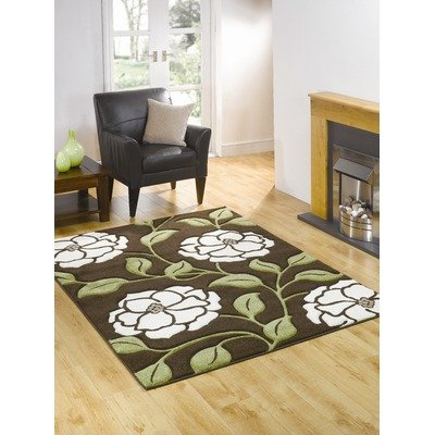 Monte Carlo Posy Brown / Green Contemporary Rug Size: 220cm X 160cm
