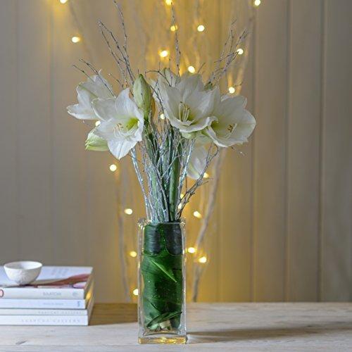 christmas-white-amaryllis-flower-glitter-twig-arrangement-bouquet-fresh-flowers-delivered