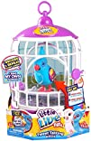 Little Live Pets Bird With Cage – Fun…