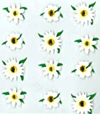 Jolee's Boutique Cabochons Dimensional Stickers, Daisies