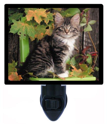 Cat Night Light - Tiger At Heart - Led Night Light