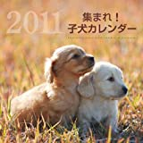 2011集まれ!子犬カレンダー