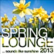 Spring Lounge 2013 (Sounds Like Sunshine)