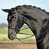 BUSSE(ブッセ) グランプリ 大勒頭絡 セット(手綱付き) ブラック 【乗馬用品】【馬具】【201512】