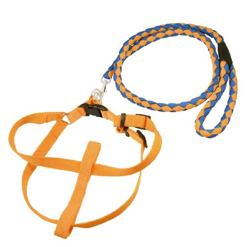 Como Yellow Blue Braided Nylon Rope Lead Doggie Dog Leash Collar Halter Harness