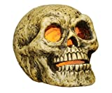 Halloween Decorations - Lighted Skull - Illuminated Skull - Skeleton - Lighted Skull Head