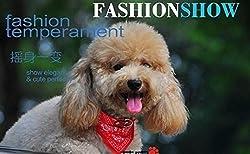 Dog and cat bandana collar from Rollstore