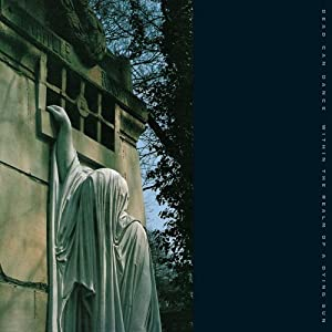 Within the Realm of a Dying Su [Vinyl LP]