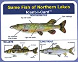 Game Fish of Northern Lakes Ident-I-Card - Freshwater Fish Identification Card