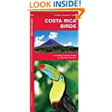 Costa Rica Birds: A Folding Pocket Guide to Familiar Species (Pocket Naturalist Guide Series)