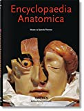 Encyclopaedia Anatomica: A Collection of Anatomical Waxes / Sammlung Anatomischer Wachse / Collection Des Cires Anatomiques