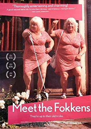 meet the fokkens streaming ita