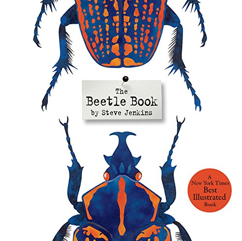 the-beetle-book