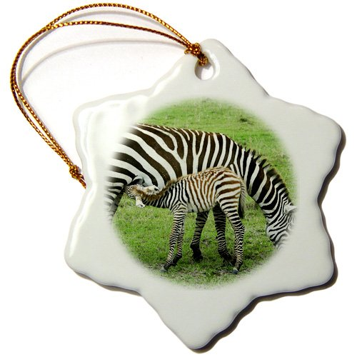 Orn_9860_1 Kike Calvo Animals - Common Zebra Breast Feeding Mil From The Mother Kenya Africa - Ornaments - 3 Inch Snowflake Porcelain Ornament front-285308