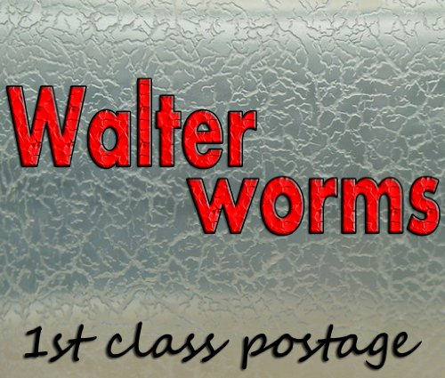 live-food-for-fish-fry-walter-worms-starter-culture-walterworms