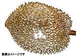 タイ産 ドリアン 1玉