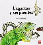 Lagartos Y Serpientes (Naturaleza)
