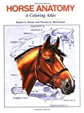 img - for Horse Anatomy: A Coloring Atlas by Robert A. Kainer (1998-12-31) book / textbook / text book
