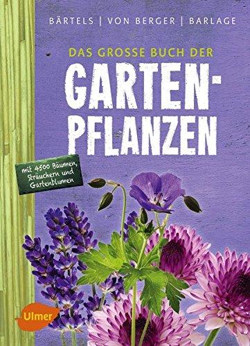 Pflegeleichter Garten Wolfgang Hensel : Pflegeleichter Garten Clever gärtnern Schritt für Schritt