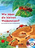 Wie leben die kleinen Waldameisen?: Eine Geschichte mit vielen Sachinformationen