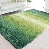 なかね家具 ふかふか グラデーション シャギーラグ ホットカーペット対応 グリーン 200×200 325gran