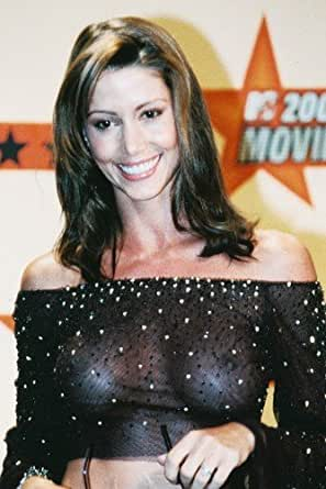 Shannon Elizabeth in See Thru Dress Color 24x36 Poster at