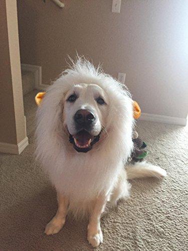 eastop-lion-mane-for-dog-medium-brown-dog-costume-for-large-dogs-dog-wigs-for-large-dogs-pet-festiva