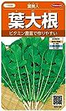 サカタのタネ 実咲野菜5130 葉大根 葉美人  00925130