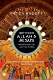 img - for Between Allah & Jesus: What Christians Can Learn from Muslims [Paperback] [2010] (Author) Peter Kreeft book / textbook / text book