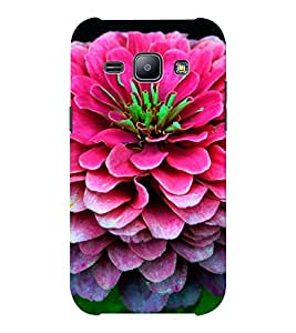 EPICCASE Big pink flower Mobile Back Case Cover For Samsung J1 Ace (Designer Case)