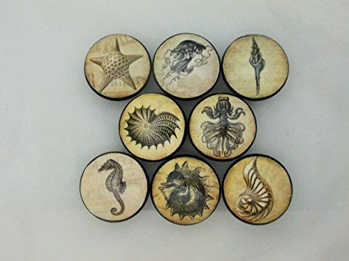 Set of 8 Vintage Sea Life Cabinet Knobs (Sea Life Knobs compare prices)