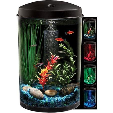 Hawkeye 3 Gallon 360 Aquarium (5 Gallon Fish Tank Starter Kit compare prices)