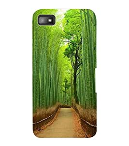 ColourCraft Beautiful scenery Design Back Case Cover for BLACKBERRY Z10