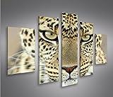Leopard MF 5 Quadri moderni su tela - pronti da appendere - montata su pannelli in legno - Fotografia formato XXL - Stampa su tela - Quadro x poltrone salotto cucina bagno mobili ufficio casa