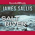 Salt River Audiobook by James Sallis Narrated by Alan Nebelthau