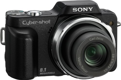 Sony Cybershot DSC-H3 is one of the Best Compact Point and Shoot Digital Cameras for Child and Action Photos Under $750
