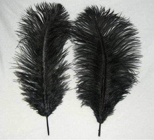 Ostrich Jet Black 20 Ostrich Feather 9 12 to Decorate Eiffel Tower Vase