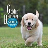 ゴールデン・リトリーバーカレンダー 2013 ([カレンダー])